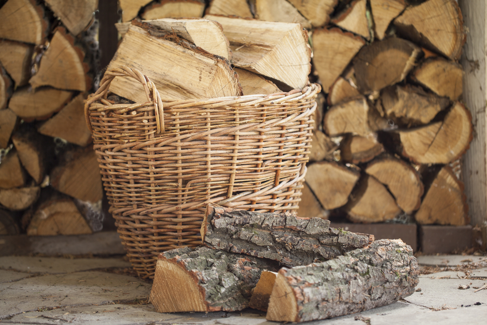 Best Wood For Wood Burning Stove Or Fireplace Heater Mag